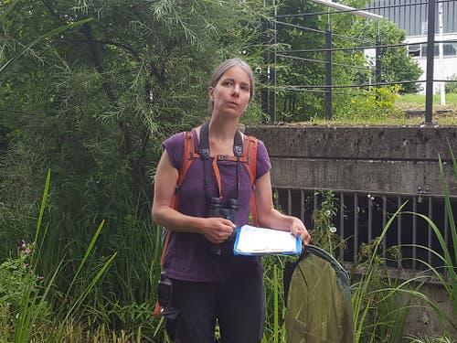 Mit Feldstecher, Schmetterlingsnetz und Notizblock: Umweltnaturwissenschaftlerin Simone Bossart zählt Kleintiere auf Zürcher Stadtgebiet. (Bild: Keystone-SDA/ Jara Uhricek)