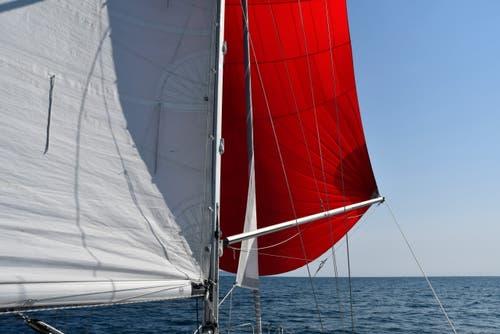 Dank Spinacker kommt die Tringa auch bei leichtem Wind gut vorwärts. (Bild: PD/Christian Perret)