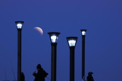 Die partielle Mondfinsternis aufgenommen in Buenos Aires, Argentinien. (Bild: Natacha Pisarenko)
