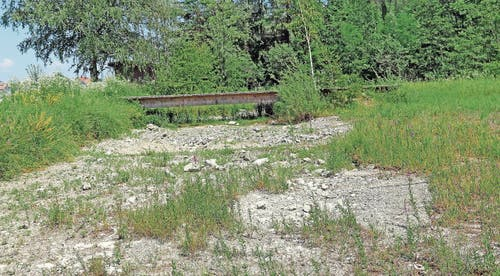 Beim ehemaligen Steinbruch Kolbenstein entstanden dynamische Lebensräume für die Gelbbauchunken. (Bild: Benjamin Schmid)