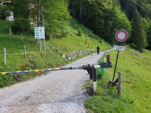 Der Ausgang des Brüeltobels: Von hier aus führt der Weg die letzten Meter ebenerdig nach Brülisau.
