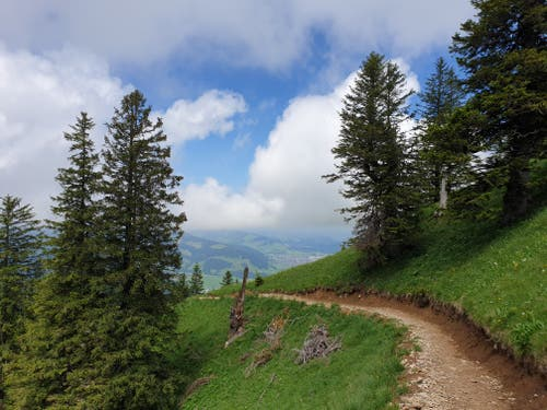 Vom Hohen Kasten geht es über einen Höhenweg zur Stauberen.