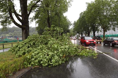 An der Horwerstrasse in Luzern blockieren umgeknickte Äste die Strasse. (Leserbild, Luzern, 6. Juli 2019)