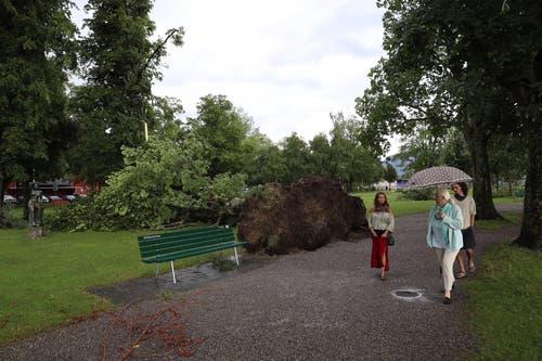 Fussgänger betrachten die Folgen des heftigen Gewitters. (Bild: Philipp Schmidli, Luzern, 6. Juli 2019)