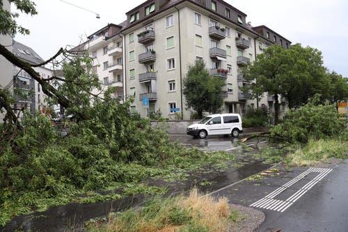 Das Gewitter hat seine Spuren an der Eschenstrasse hinterlassen. (Bild: Philipp Schmidli, Luzern, 6. Juli 2019)