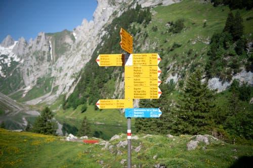 Von der Bollenwees aus sind verschiedenste Routen möglich. (Bild: Ralph Ribi)
