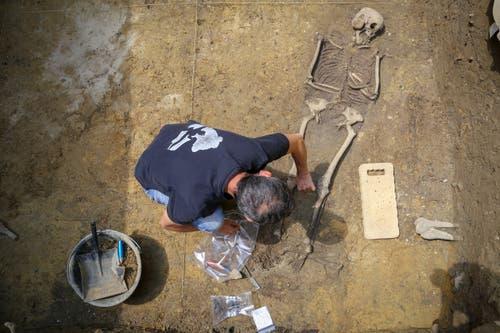 ... menschliche Überreste begraben. Bei einer Baustelle... (Bild: Raphael Rohner)