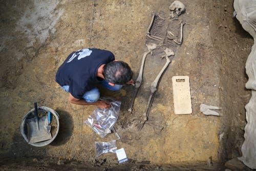 Im Labor werden die Knochen später analysiert und.. (Bild: Raphael Rohner)