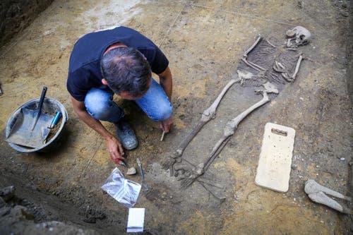 Für die Archäologie ist der Fund etwas Besonderes. Über die Skelette... (Bild: Raphael Rohner)