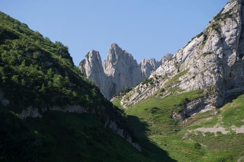 «Ein Genuss»: Beim Anblick des Alpsteins schwelgt Max Niedermann in Erinnerungen. (Bild: Ralph Ribi)