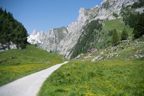 Die ersten Touren führten Max Niedermann in den Alpstein – er kennt das Gebiet wie seine Westentasche. (Bild: Ralph Ribi)