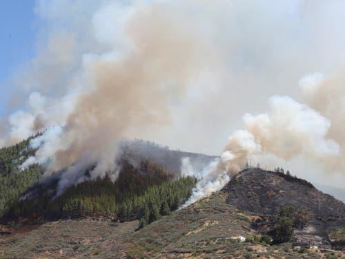 Die Rauchsäulen des Waldbrandes auf Gran Canaria sind auch von der Nachbarinsel Teneriffa aus zu sehen. (Bild: KEYSTONE/EPA EFE/ELVIRA URQUIJO A.)