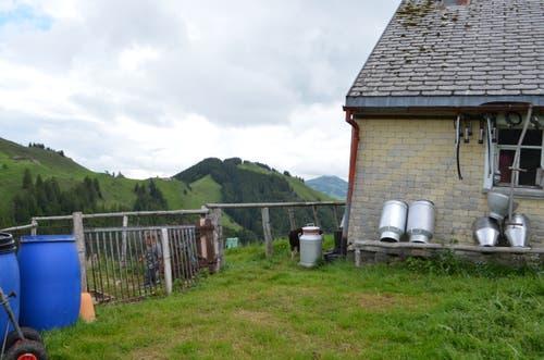 Die Alp mit Sicht auf die Wasserschaffen.