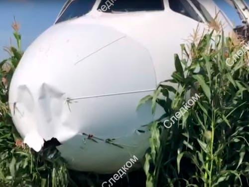 Das im Maisfeld bei Moskau liegende Passagierflugzeug. (Bild: KEYSTONE/EPA RUSSIAN INVESTIGATIVE COMMITTEE HANDOUT)