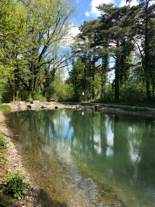 Die Heuwiese: Ein ökologisch aufgewertetes Gebiet im Wartau, das auch nicht vom Abfall verschont wird. (Bild: PD)