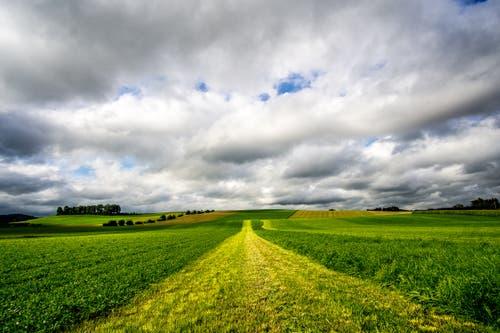 Trotz dicker Wolken lohnt sich ein Spaziergang über das Moos. (Bild: Vinzenz Blum, 21. August 2019)