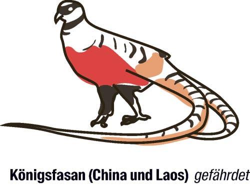 Vorschlag von China: der Artenschutz soll strenger werden.Laut der Roten Liste existieren in der Wildnis noch maximal 9999 erwachsene Individuen der Vogelart. In den letzten Jahren schrumpften die Populationen.