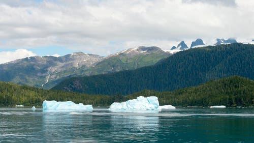 Der Tongass National Forest liegt direkt an der Küste Alaskas (Bild: Keystone/Spiegel Online/Washington Post)