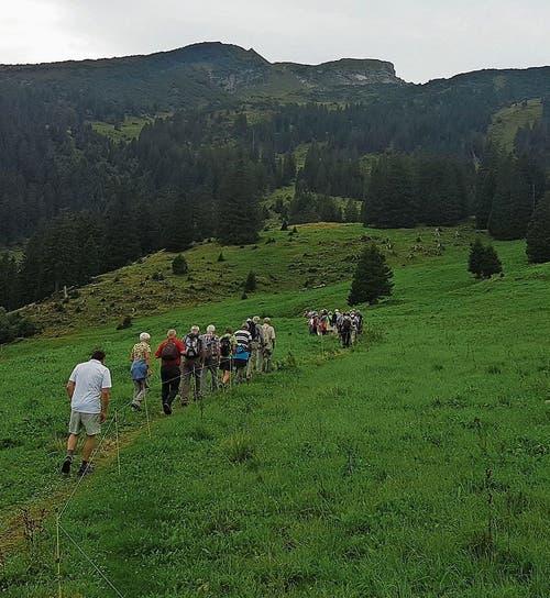 Gut 40 Personen wanderten auf die Alp Malschüel. Bilder: PD