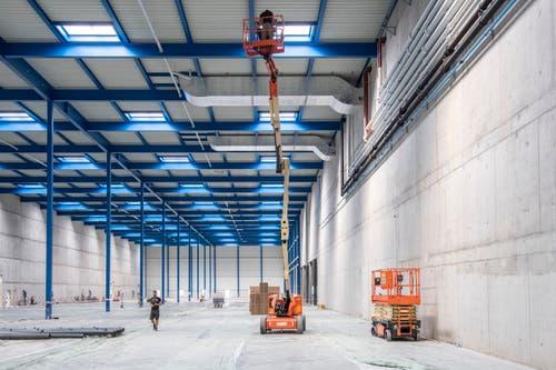 Fast 20 Meter hohe Montagehalle auf dem Altfeld-Areal. (Bild: Urs Bucher)