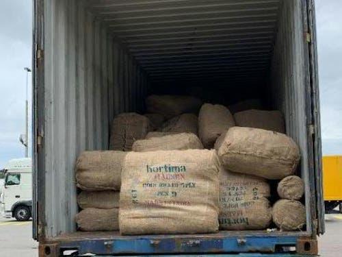 Die schädlichen aus Asien Käfer befanden sich in Jutesäcken voller Bindfäden aus Kokosfasern. (Bild: EZV)