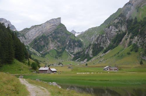 Kleine Alphütten liegen verstreut auf der Seealp.