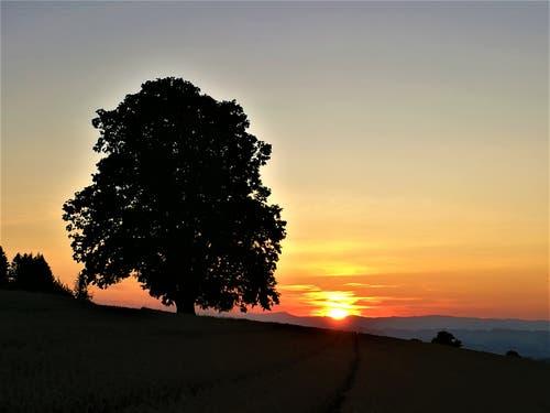Wunderschöner Sonnenuntergang. (Bild: Urs Gutfleisch, Ruswil, 8. August 2019)