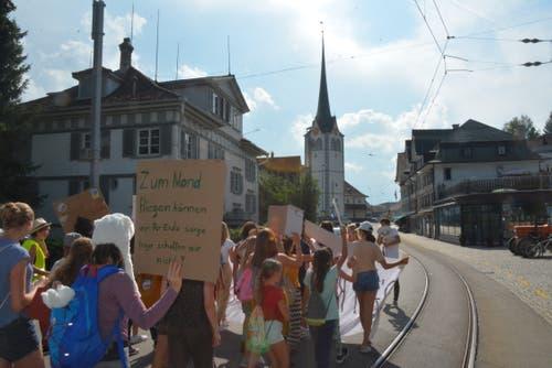Mit selbstgemachten Schildern und Banner marschieren die Demonstranten durch das Teufner Dorfzentrum. (Bild: Natascha Arsic)