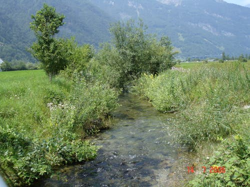 Der Klostergraben in Seedorf nach der Renaturierung 1999. (Bild: PD)