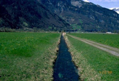 Im Bild: Der Klostergraben in Seedorf vor der Renaturierung 1998. (Bild: PD)