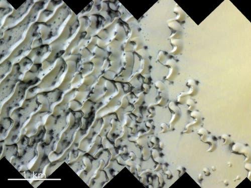 Gasausbrüche beim Auftauen von Eis erzeugen die dunklen Stellen in diesem Dünenfeld am Nordpol auf dem Mars. (Bild: ESA/Roscosmos/CaSSIS, CC BY-SA 3.0 IGO)
