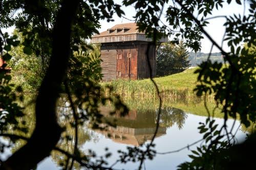 Ein Idyll: Tröckneturm und einer der beiden Burgweier.