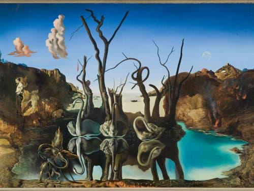 «Cygnes se reflétants en éléphants» (1937) von Salvador Dalí. (Bild: Privatbesitz, © Salvador Dalí, Fundació Gala-Salvador Dalí /)