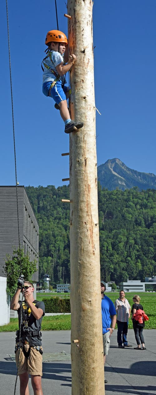 Der Weg nach oben am 18 Meter hohen Kletterbaum ist noch weit und mit viel Mut gepflastert. (Bild: Robert Hess, Alpnach, 21. September 2019)
