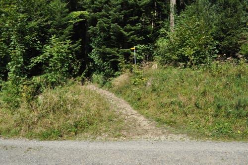 Des öfteren kreuzt der Wanderweg eine Strasse.