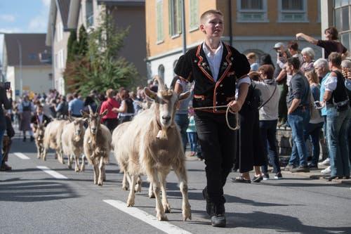 Familie Vogel von der Alp Schlacht. (Bild: Boris Bürgisser)