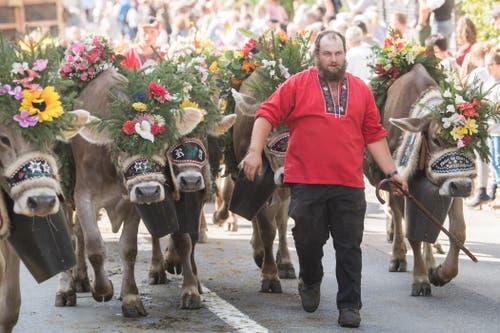 Familie Emmenegger von der Alp Witmoos. (Bild: Boris Bürgisser)