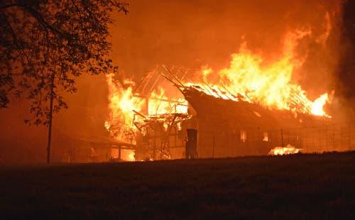 Die Brandbekämpfung wurde durch den heftigen Wind erschwert. (Bild: Luzerner Polizei, Rothenburg, 29. September 2019)
